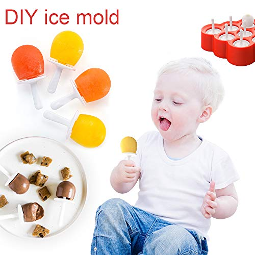 (Aogist Reusable ice mold, DIY Ice Cream Maker Kit and Candy Chocolate Mould for Kids, Adults)