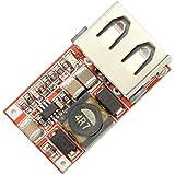 Ailavi DC-DC Buck Converter 6V-24V 12V/24V To 5V 3A USB Output Module