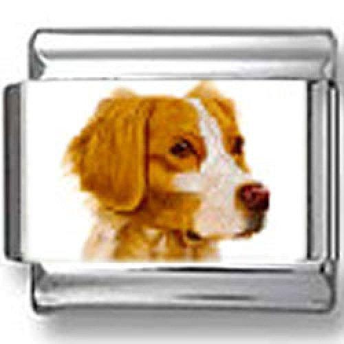 Spaniel Dog Photo Charm (Brittany Spaniel Dog Photo Italian)
