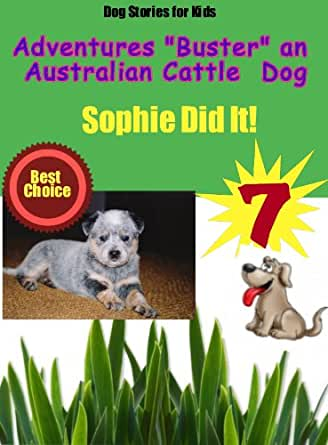 dog stories for preschoolers stories for the adventures of buster an 717