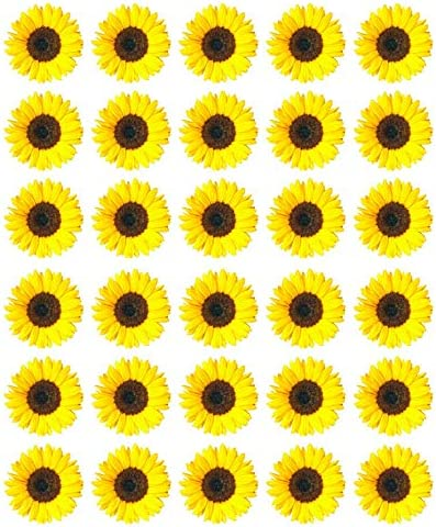 Amazing 30 Sunflowers Yellow Cupcake Toppers Edible Wafer Paper Fairy Cake Funny Birthday Cards Online Necthendildamsfinfo