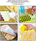 Honeycomb Ice Cube Tray,37 Lattice Food Grade