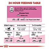 Royal Canin Feline Health Nutrition Kitten Dry Cat