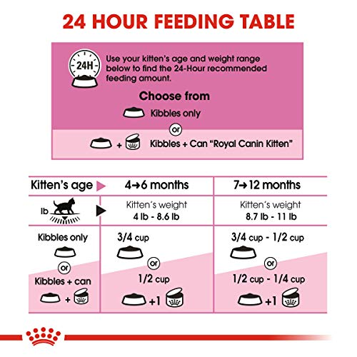 Royal Canin Feline Health Nutrition Kitten Dry Cat Food, 15-Pound