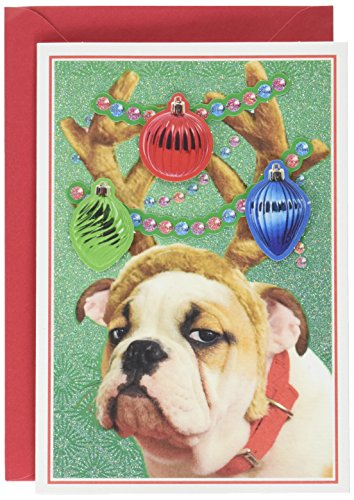 Bulldog Christmas (Hallmark Shoebox Funny Christmas Card (Bulldog in Reindeer Antlers))