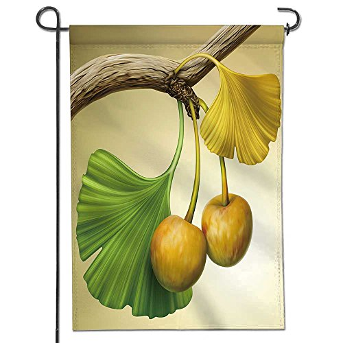 aolankaili Double Sided Polyester Garden Flag illustration of ginkgo tree branch with fruits Outdoor Home Garden Flower Pot Decor 12