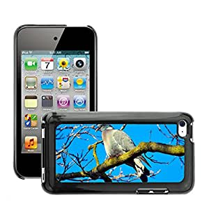 Hot Style Cell Phone PC Hard Case Cover // M00130107 Alive Alone Animal Avian Beak // Apple ipod Touch 4 4G 4th