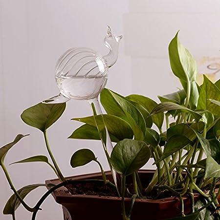Kicode Arrosage Aqua Globes Souffl/é /à la main Mini Verre Vase Automatique Plante Waterer Ampoules D/écoratif Conception
