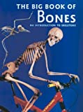 The Big Book of Bones, Claire Llewellyn, 0872265463