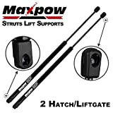 Partsam Qty (2) Rear Tailgate Gas Charged Lift Support Struts For 2006-2011 Chevrolet HHR 6123