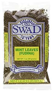 Swad Dry Mint Leaves 30 Grams