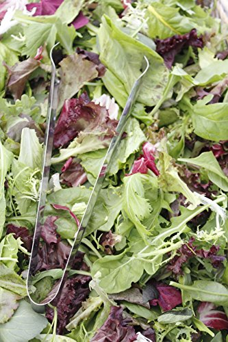 500 Mesclun Mix Lettuce Seeds Mixed Greens for Salad by RDR Seeds