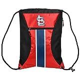 MLB St. Louis Cardinalsbig Stripe Zipper Drawstring Backpack, ST. Louis Cardinals, One Size