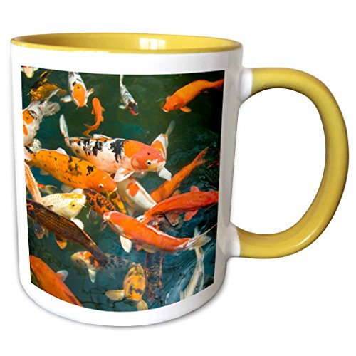 3dRose Danita Delimont - Fish - Ornament Koi, Shopping Mall, Malacca, Malaysia -AS23 SWS0092 - Stuart Westmorland - 11oz Two-Tone Yellow Mug - Westmorland Mall