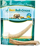 Grade-A Medium Whole Elk Antler Dog Chew (1 Antler) Sourced in the USA