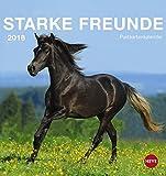 Pferde Postkartenkalender - Kalender 2018