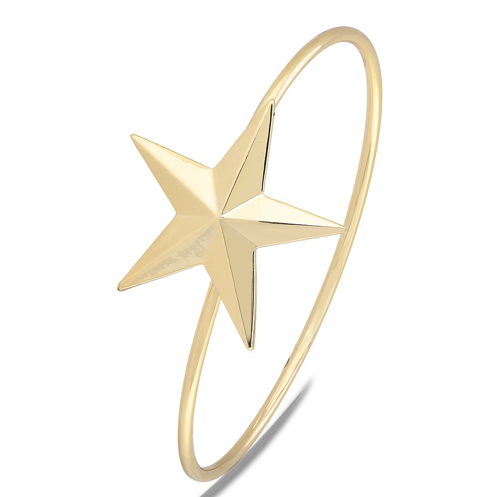TUSHUO Simple Amazing Beautiful Five-Pointed Star Bangle Charm Bracelet for Girls and Women Gift