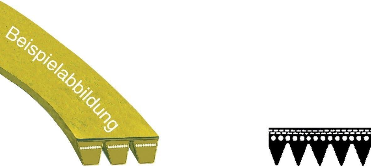 –Correa de transmisión correa 1255PJ 5MAEL lavadora como Bosch Siemens 439490