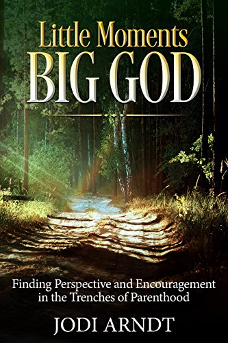 Little Moments Big God: Finding Perspective and Encouragement in the Trenches of Parenthood