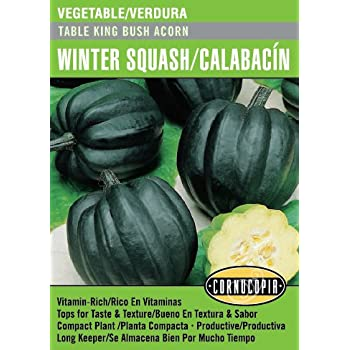 Amazon.com : Black Beauty Squash/Calabacita - English ...