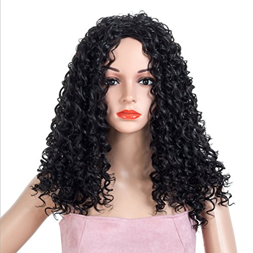 Amazon.com : Ladies Wig Long Curly Hair Black Fluffy Small Curly Hair Fashion Natural Daily High Temperature Silk Chemical Fiber Hair Wig : Beauty