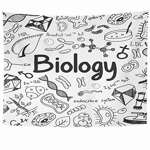 Ahawoso Tapestry 60x50 Inch Cell Discovery Biology Science Theory Doodle Handwriting Gene Tool Nature Lab Research Bacteria Tapestries Wall Hanging Home Decor for Living Room Bedroom Dorm