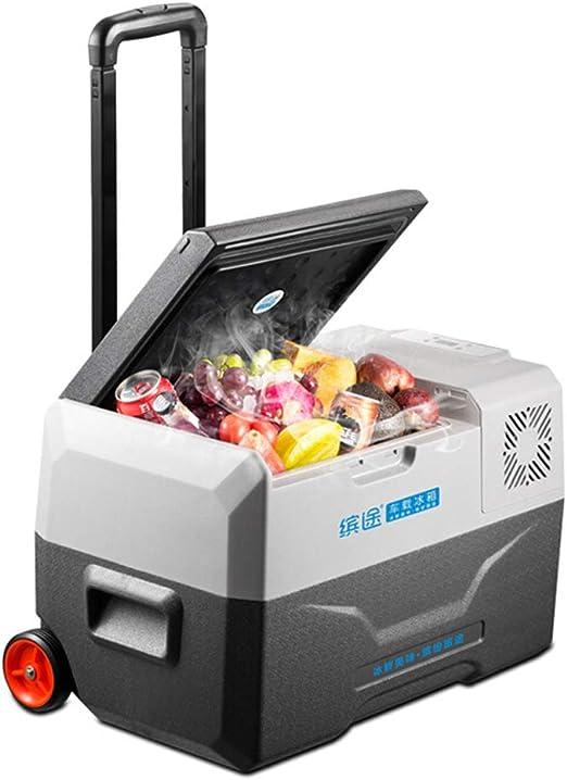 52L Palanca refrigerador Coche refrigerador hogar portátil pequeño ...