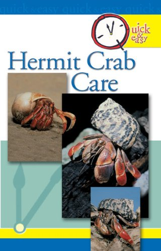 - Quick & Easy Hermit Crab Care