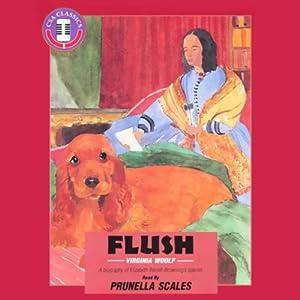 Flush Hörbuch