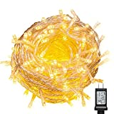 WISD String Lights 1000 LED Warm White Plug in Fairy lights on Clear Wire with 8 Effects and Memory Function, String Lights Decor for Wedding, Bedroom, Christmas, Party, Indoor Outdoor Home Decoration