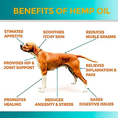 Organic Hemp Oil for Dogs & Cats - 2000mg - Premium Hemp Extract - Anxiety Relief for Dogs - Grown & Made in USA - Omega 3, 6 & 9 - Supports Hip & Joint Health - Natural Relief for Pain