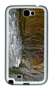 fancy case River Canyon TPU White case/cover for samsung galaxy N7100/2