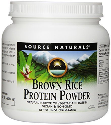 Source Naturals Brown Rice Protein Powder, 16 Ounce