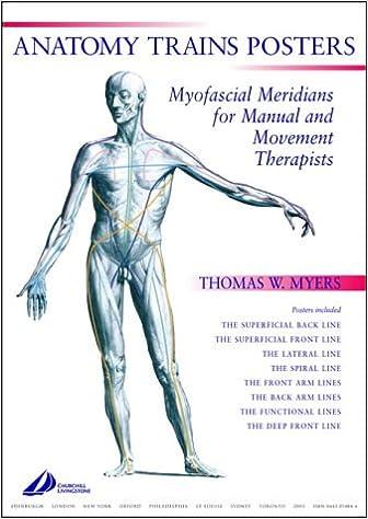 Anatomy Trains Posters: Amazon.co.uk: Thomas W. Myers LMT NCTMB ARP ...