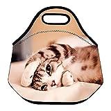 Niyatree Neoprene Lunch Box Lunch Tote Bag With Heavy Duty Zipper for Men Women Kid - Cat