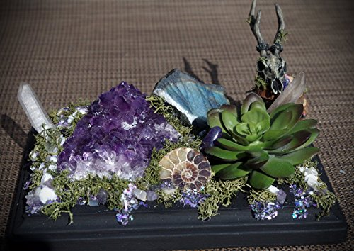 Medium Hand Made Amethyst Succulent Deer Skull Crystal Garden Display w/ Amethyst, Ammonite, Quartz, Labradorite
