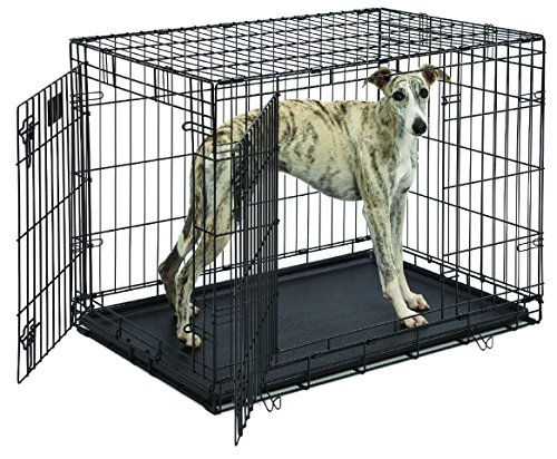 [MidWest Life Stages Folding Metal Dog Crate] (24w Life)