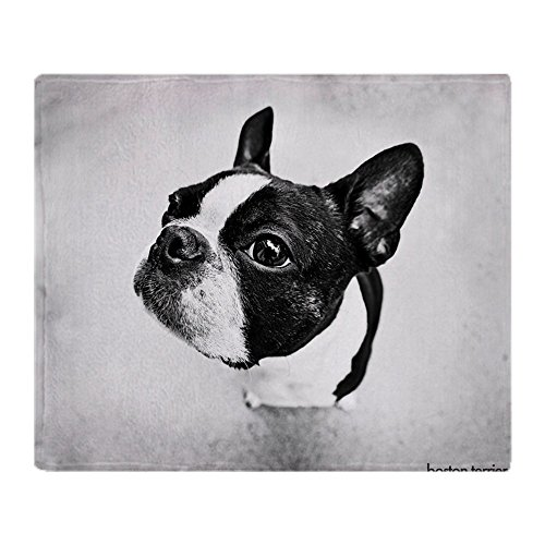 CafePress Boston Terrier Soft Fleece Throw Blanket, 50