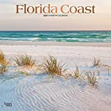Florida Coast 2020 12 x 12 Inch Monthly Square Wall Calendar with Foil Stamped Cover, USA United States of America Southeast State Nature