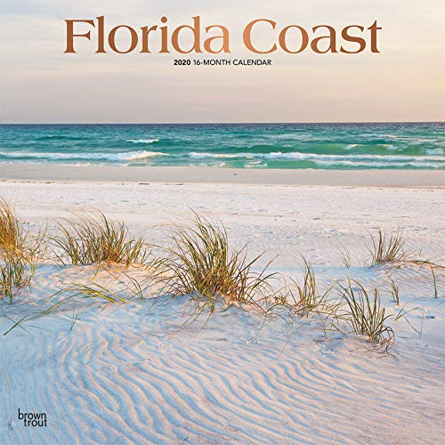 Florida Coast 2020 12 x 12 Inch Monthly Square Wall Calendar with Foil Stamped Cover, USA United States of America Southeast State Nature (English, French and Spanish Edition) by BrownTrout Publishers Inc.