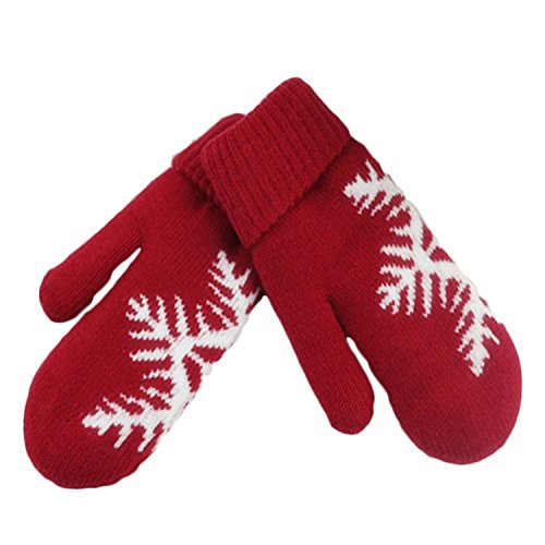 R REIFENG Women Lady Winter Warm Christmas Gloves Mittens