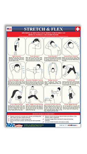 Workplace Stretch & Flex Poster