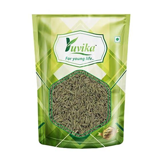 YUVIKA Sonf Choti - Saunf Barik - Foeniculum Vulgare - Fennel Seeds Small (100 Grams)