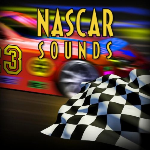 Crank It Up: Nascar Zoom Past