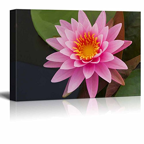 Beautiful Scenery Landscape Pink Lotus in Pond Wall Decor ation
