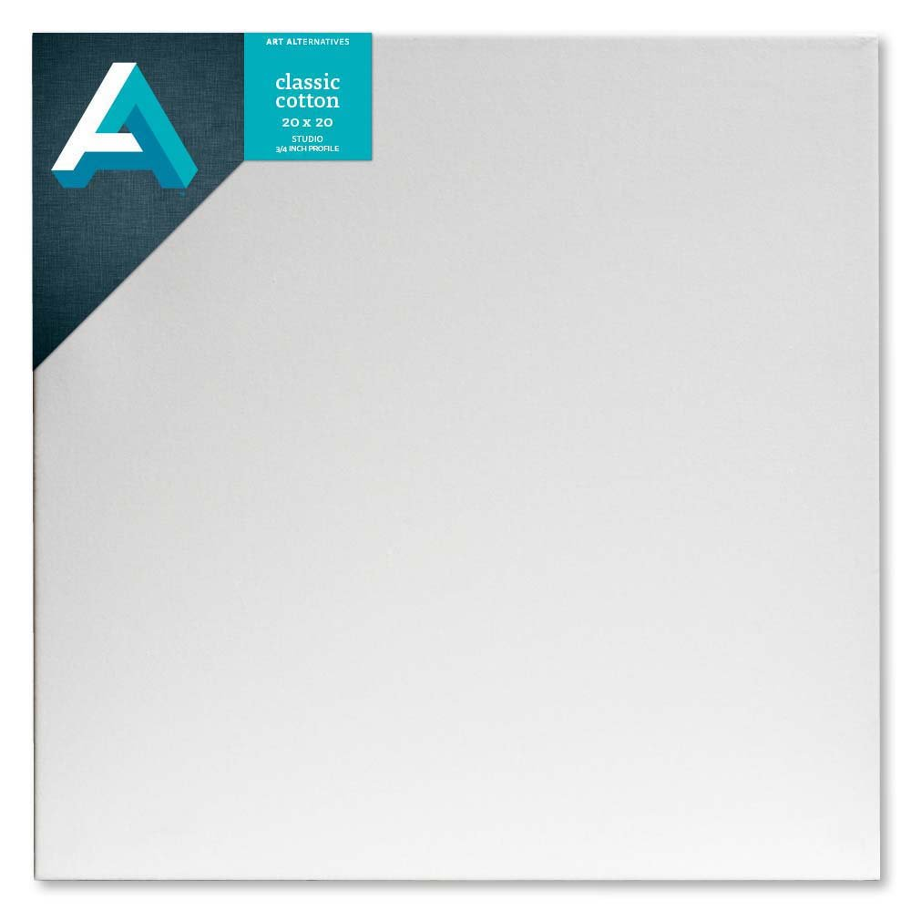 AA Studio Stretched Canvas Case/10 20X20 by Art Alternatives