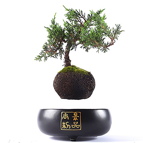 Japanese style Levitating Air Bonsai Pot - Magnetic Levitation Suspension flower (Black)