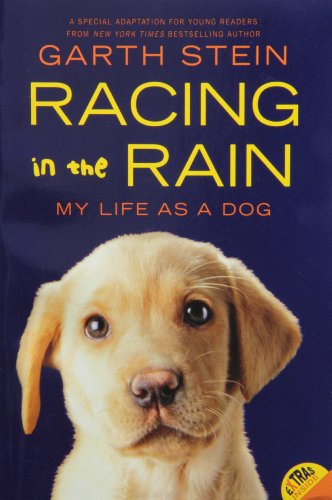 Driver Stein Racing (Racing in the Rain: My Life as a Dog)