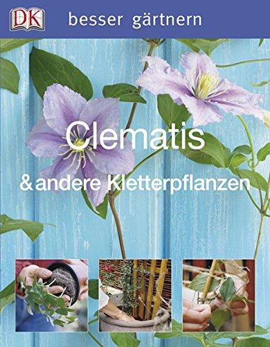 besser-grtnern-clematis-andere-kletterpflanzen