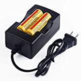 Worldoor New arrival 2 PCS 3.7V 18650 5000mAh Protected Lithium Li-ion Rechargeable Battery for LED Light& Headlight& Headlamp& Handheld Flashlight& Torch with 1PCS Quick Smart Charger